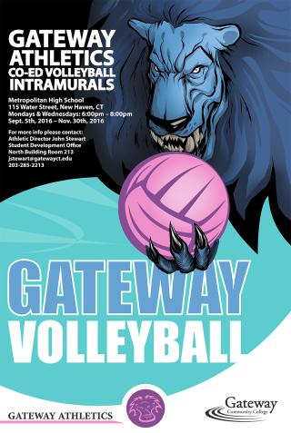 GW_volleyball_2016